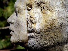 Donald Forster Sculpture Park