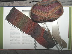 lichen ribbed sock WIP