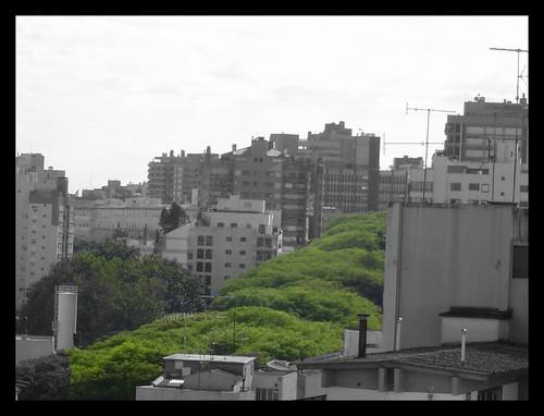 My City - Life