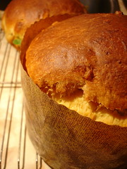 Panettone with Mexican Candied Fruit I