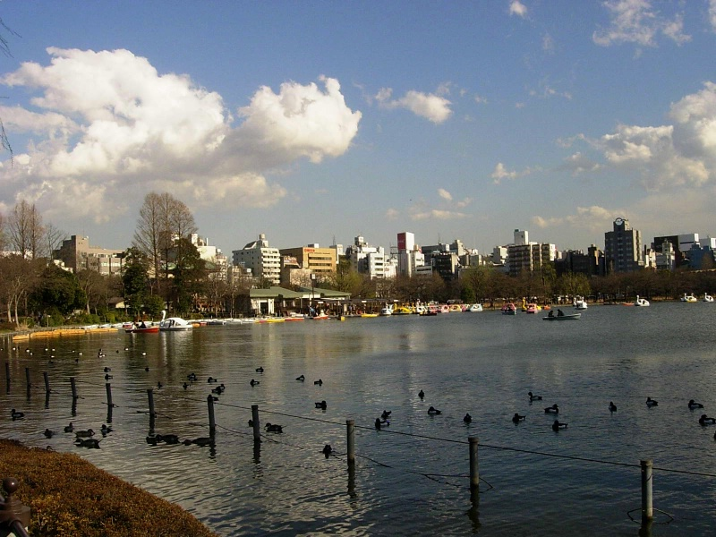 Ueno park over Shinobazu pond.
