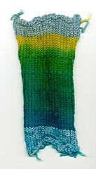 Two color dye sampler