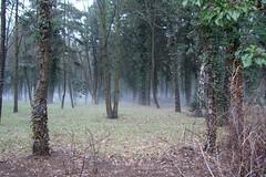 März 2006