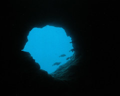Blue hole exit at Turtle Cove
