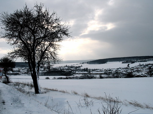 Winter in the Countryside Around Prague
