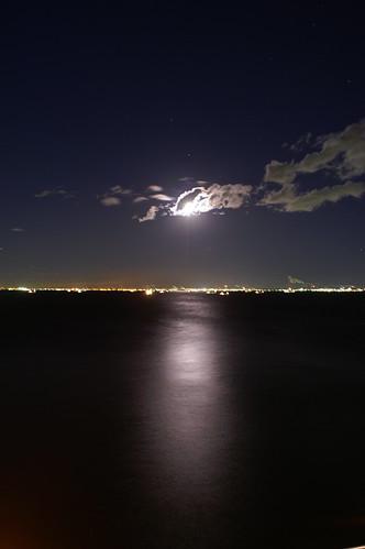moonlight on tokyo bay