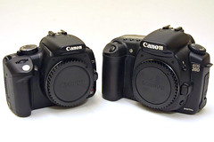 canon 350d guide rh digital slr guide com EOS 350D Canon Picture Quality canon eos rebel xt 350d instruction manual