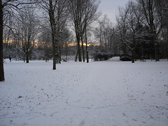 Vondelpark in the Snow