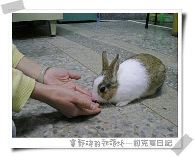 約克夏日記_20060103_聞聞鬼