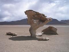 Arbole de Piedra, Stone tree