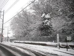 すっかり雪国.jpg