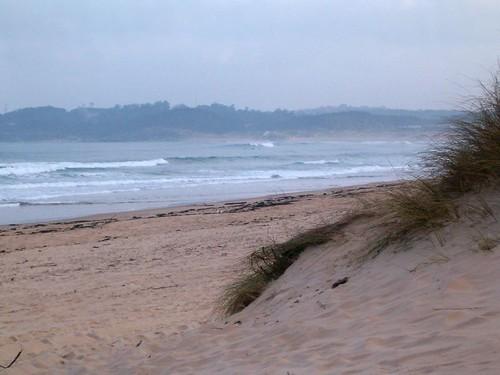 95854395 7526c021c7 Las olas de hoy Domingo, 5 de Febrero de 2006  Marketing Digital Surfing Agencia