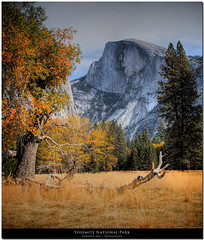 Half Dome watches Yosemite valley turn through Autumn to Winter photo by Don J Schulte