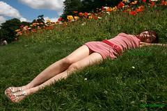 Mỹ nhân hoa photo by DulichVietnam360°