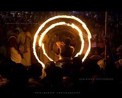 Circle of life photo by harimenon4u