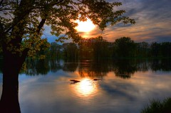 Submerged Tree Branch at Sunset HDR photo by Gary.Lamprecht