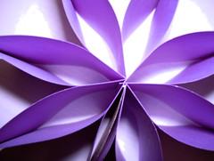 117: Purple Post-It Pansy