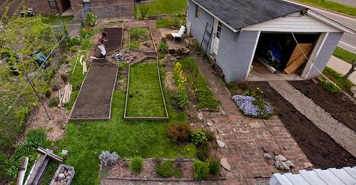 backyard spring 09