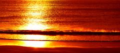 Golden Sea photo by bergurij