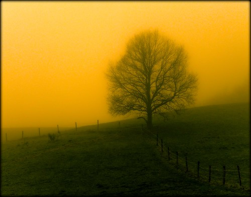 Marienhagen - a foggy morning photo by NPPhotographie