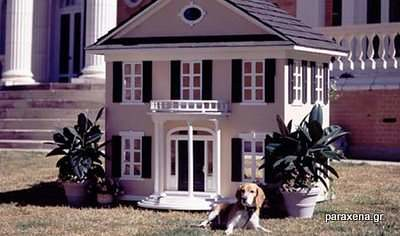 dog-house-pictures-04