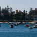 Sydney-8545 © Bart Plessers