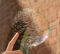 Popping Soap Bubble photo by richard.heeks