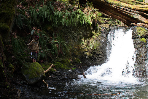 Harvey hiding at Rustic Falls