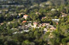 Mini Bel Air, Los Angeles, California photo by Pedruca