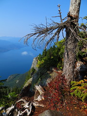 Fall Over Howe Sound photo by Dos Con Mambo