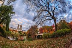 Central Park Fisheye photo by Samantha Decker