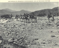 1941- Erythrée- Méharistes en patrouille