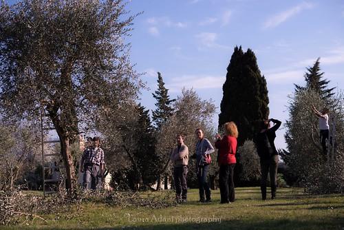 laudemio marzo 2014-7574