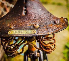 Vintage bicycle photo by Bev Goodwin