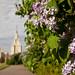 VikaTitova_20130519_084957