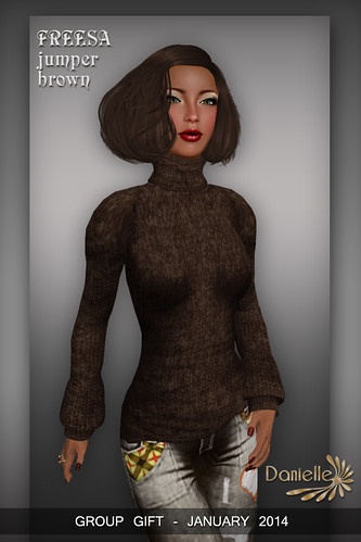 DANIELLE Group Gift Jan_2014 Freesa Jumper Brown