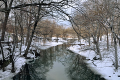 The Bronx River photo by Eddie C3