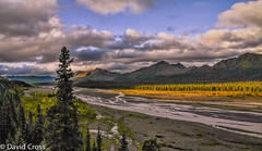 A View from Denali National Park photo by buffdawgus