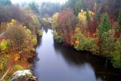 Fall photo by Torsten Reuschling