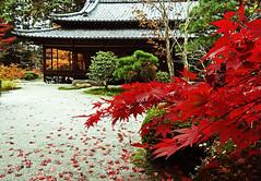 Kyoto State of Mind photo by Rekishi no Tabi