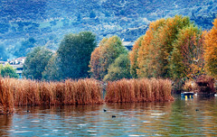 Lake Orestiada photo by kyramas