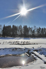 sunny winter's day photo by Jwaan