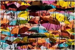 umbrellas, paraguas photo by Sandro FotoExpresiones.es