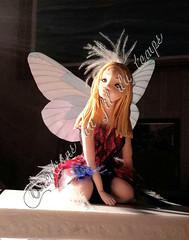 Fée papillon des sous-bois