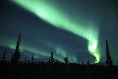 Northern Lights in Alaska photo by Critter Seeker