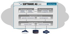 Software AG cloud offering