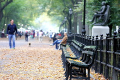 Central Park Benches photo by Phil Roeder