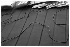 A la manera de Vivian Maier -  In the way of Vivian Maier. photo by Rumbo181