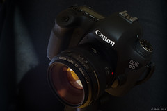"""Golden eye"" : EOS-6D seen by X100 photo by patman69"