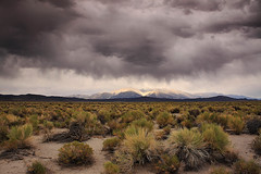 """desert storm"" photo by bertdennisonphotography"
